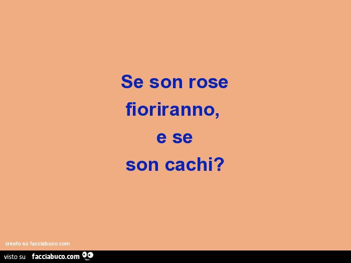 Se Son Rose Fioriranno E Se Son Cachi Facciabuco Com